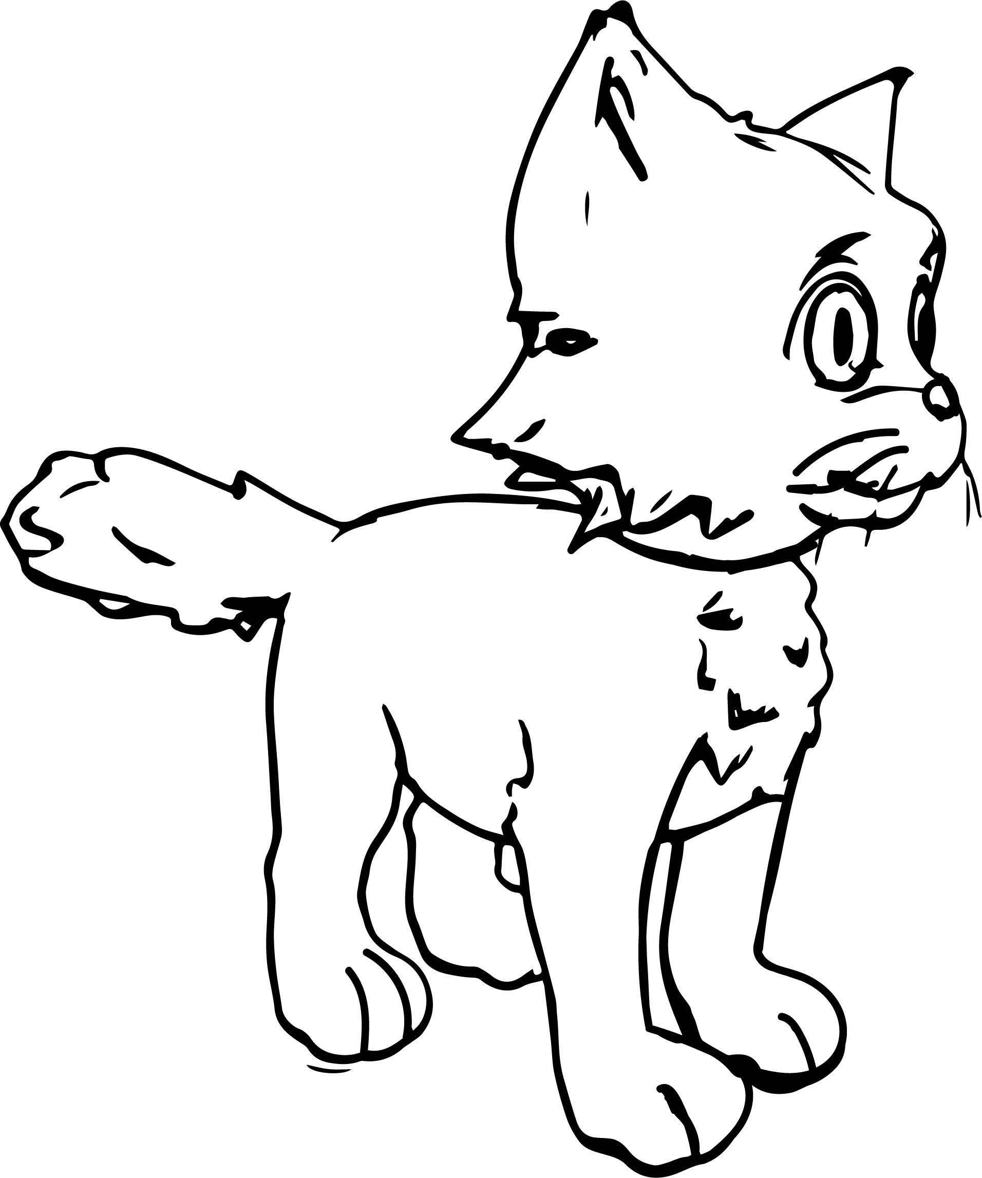 Your Cat Coloring Page