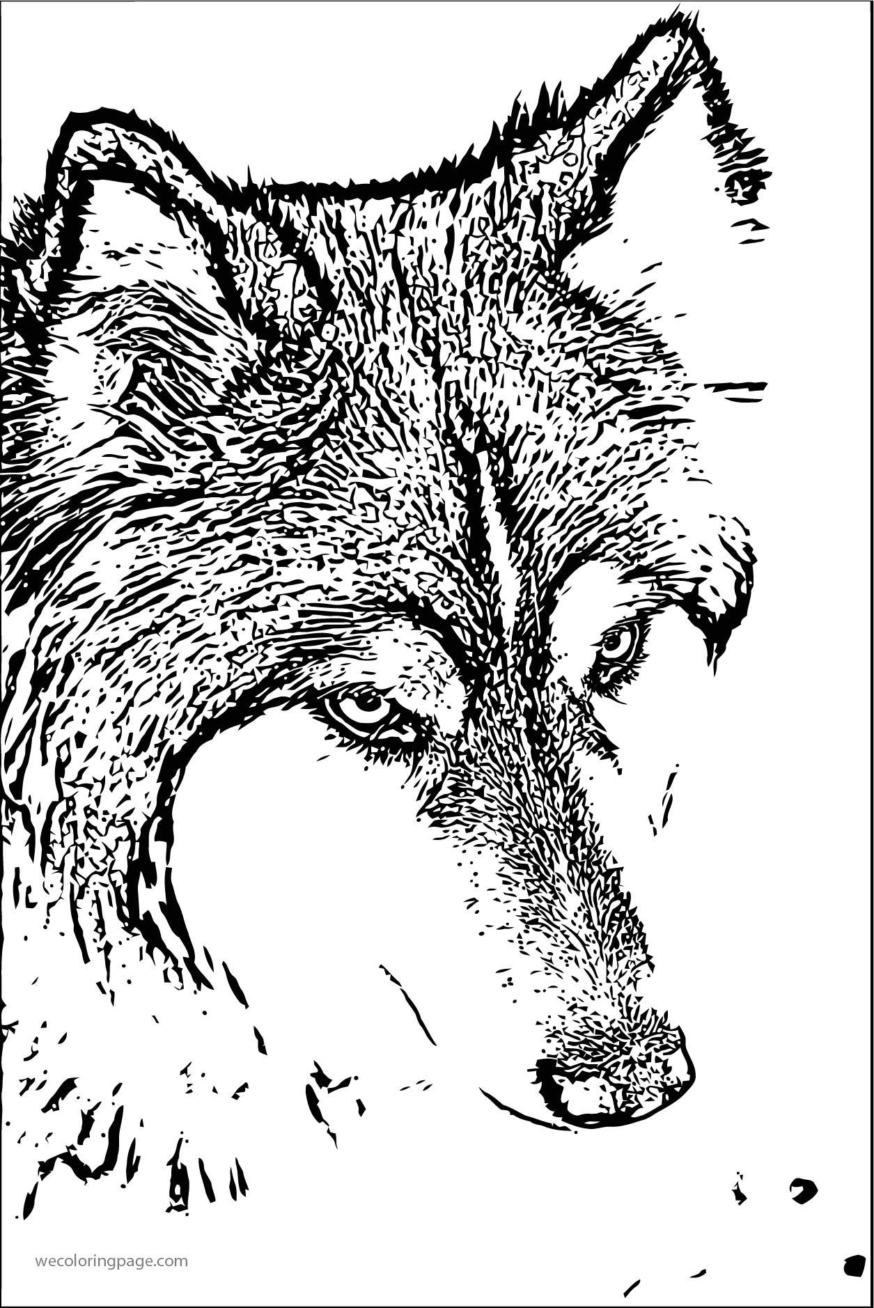 Balto Realistic Sketch Coloring Page