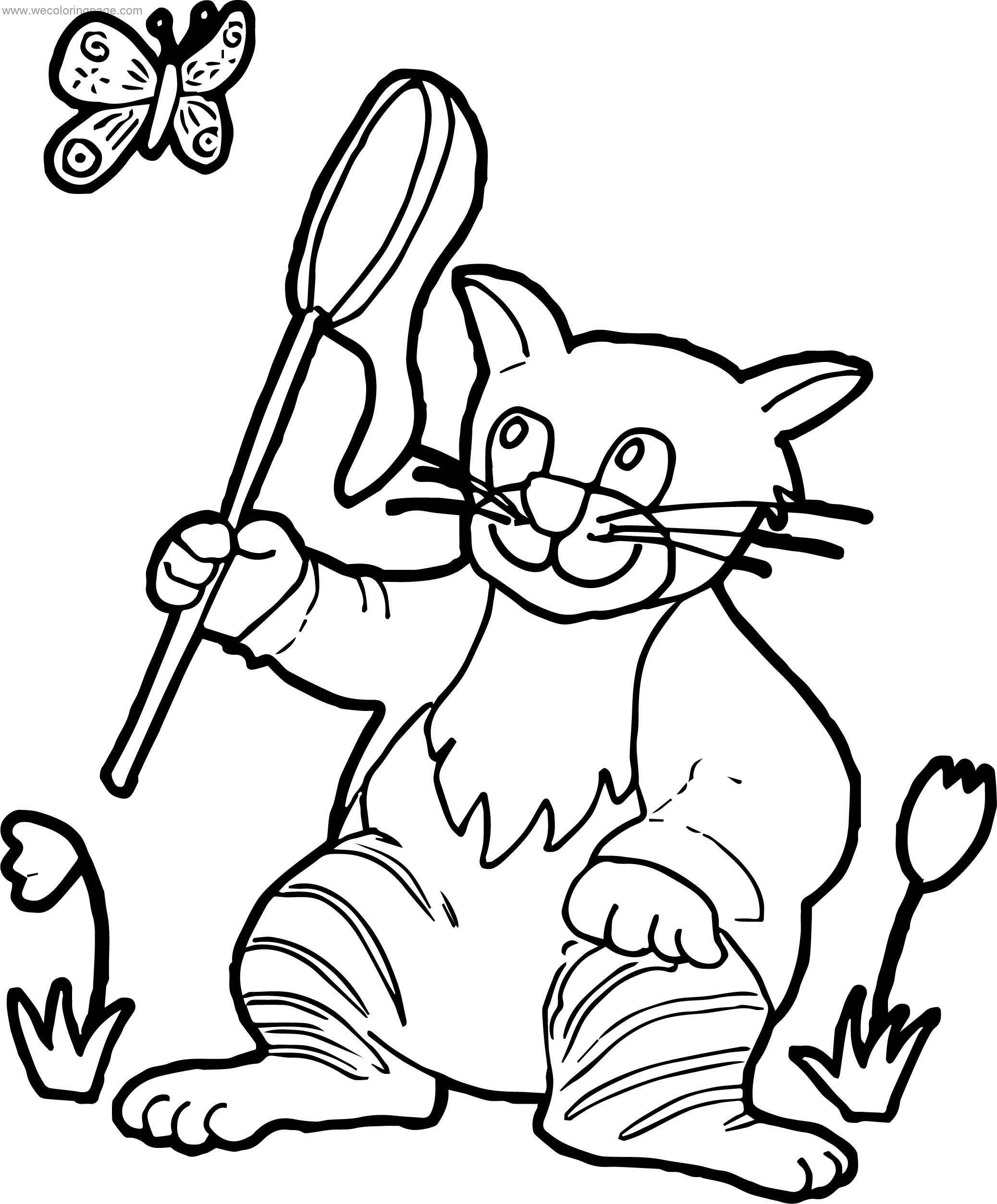 Cat Coloring Pages Cat Catching Butterfly