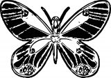 Charms Butterfly Coloring Page