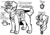 Cooper's Ref Sheet Coloring Page