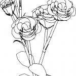 Flower Roses Bold Coloring Page
