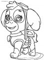 How To Draw Skye From Paw Patrol Step Coloring Page