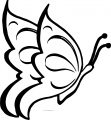 Jonata Butterfly Coloring Page