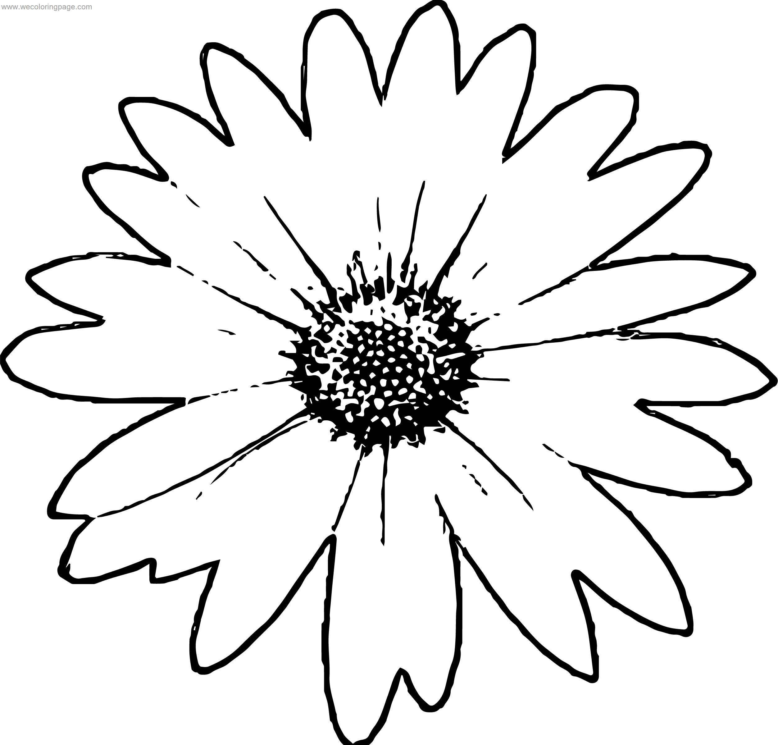One Daisy Flower Coloring Page | Wecoloringpage.com