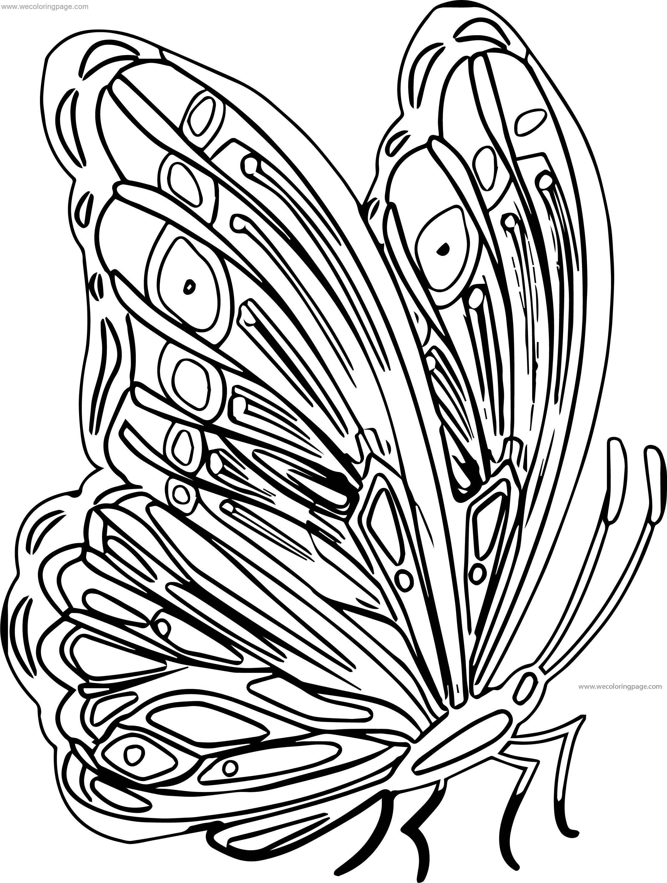 Purple Butterfly Clipart Picture Coloring Page