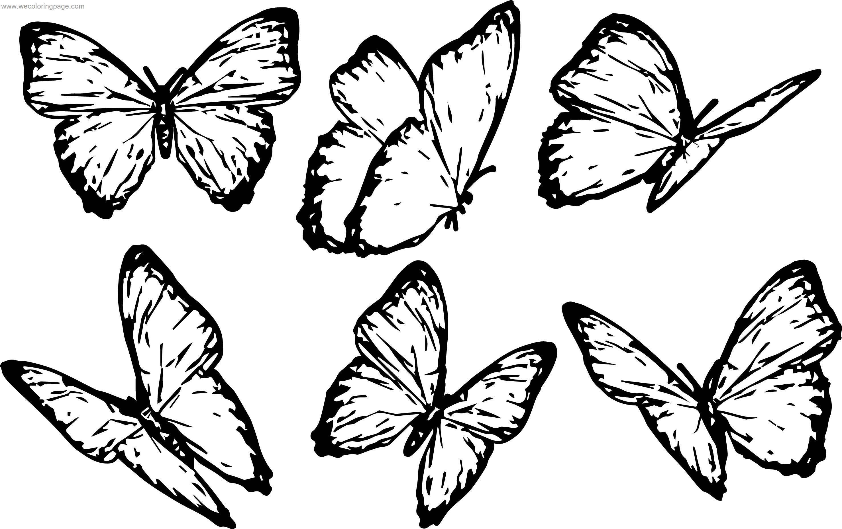 Six Butterfly Coloring Pageformat