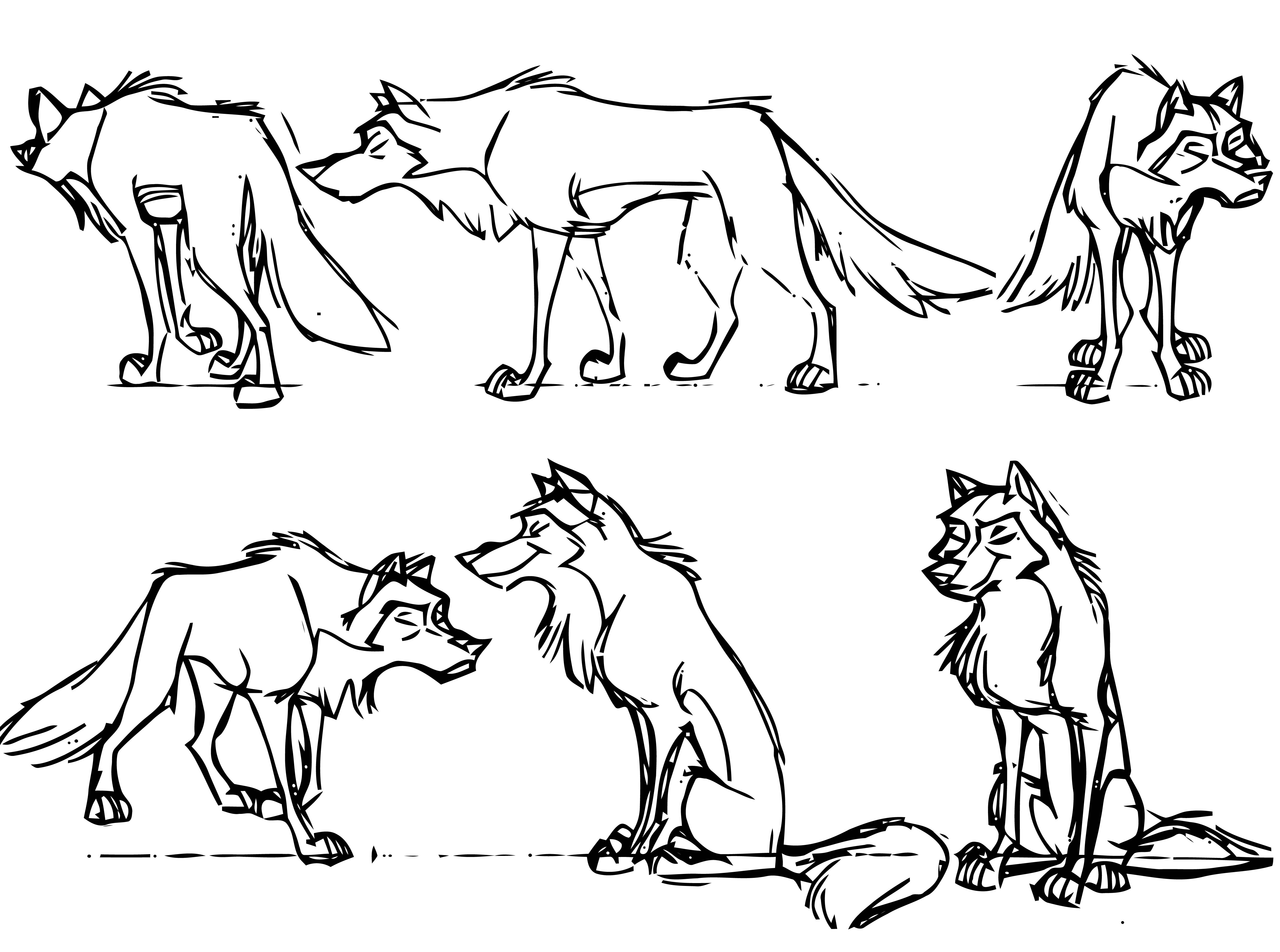 Sketch Balto Coloring Pages Online