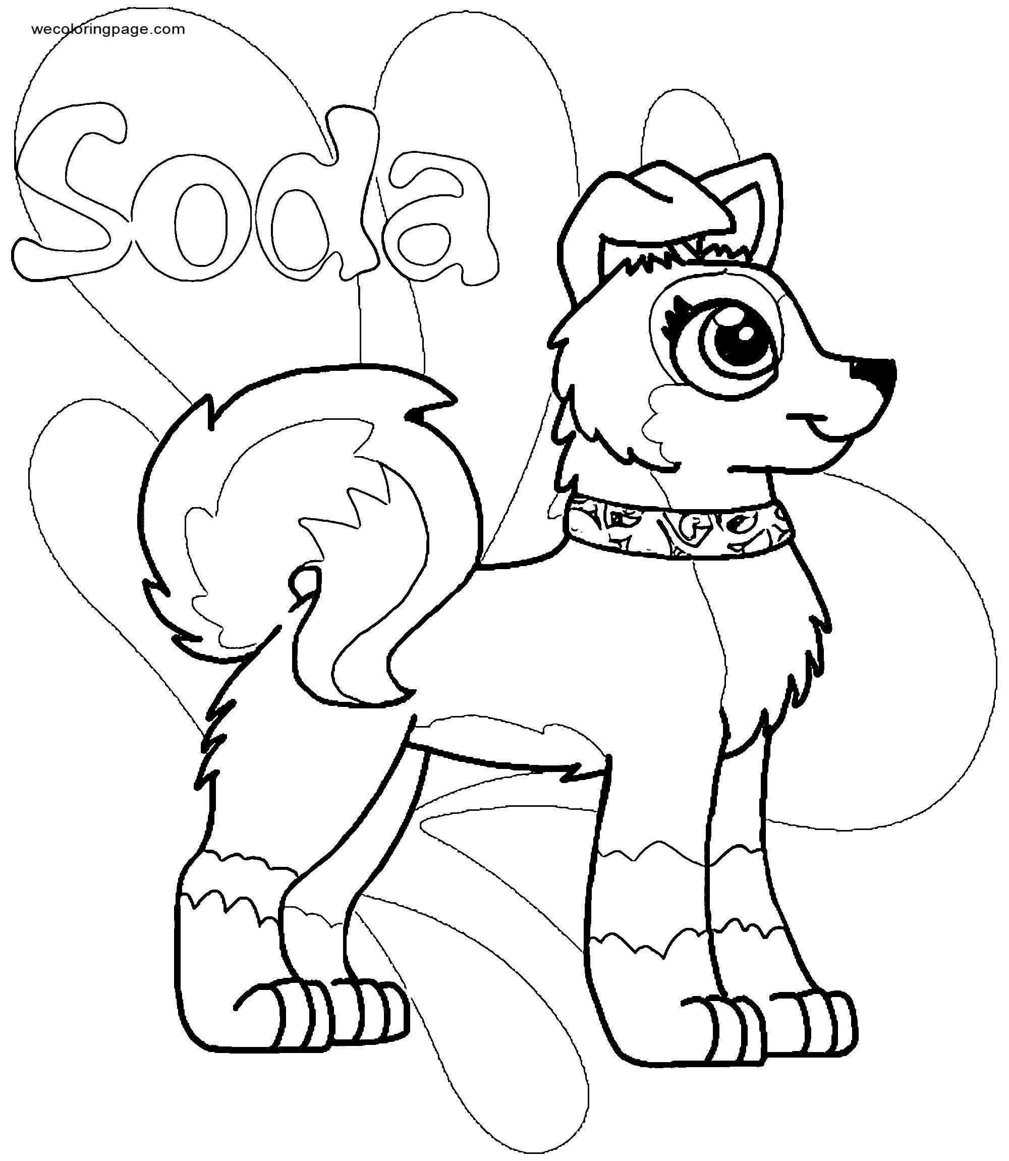 Soda Paw Patrol Dog Coloring Page