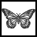 Butterfly Black Frame Picture Coloring Page