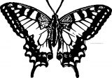 Butterfly Coloring Page Wecoloringpage 117