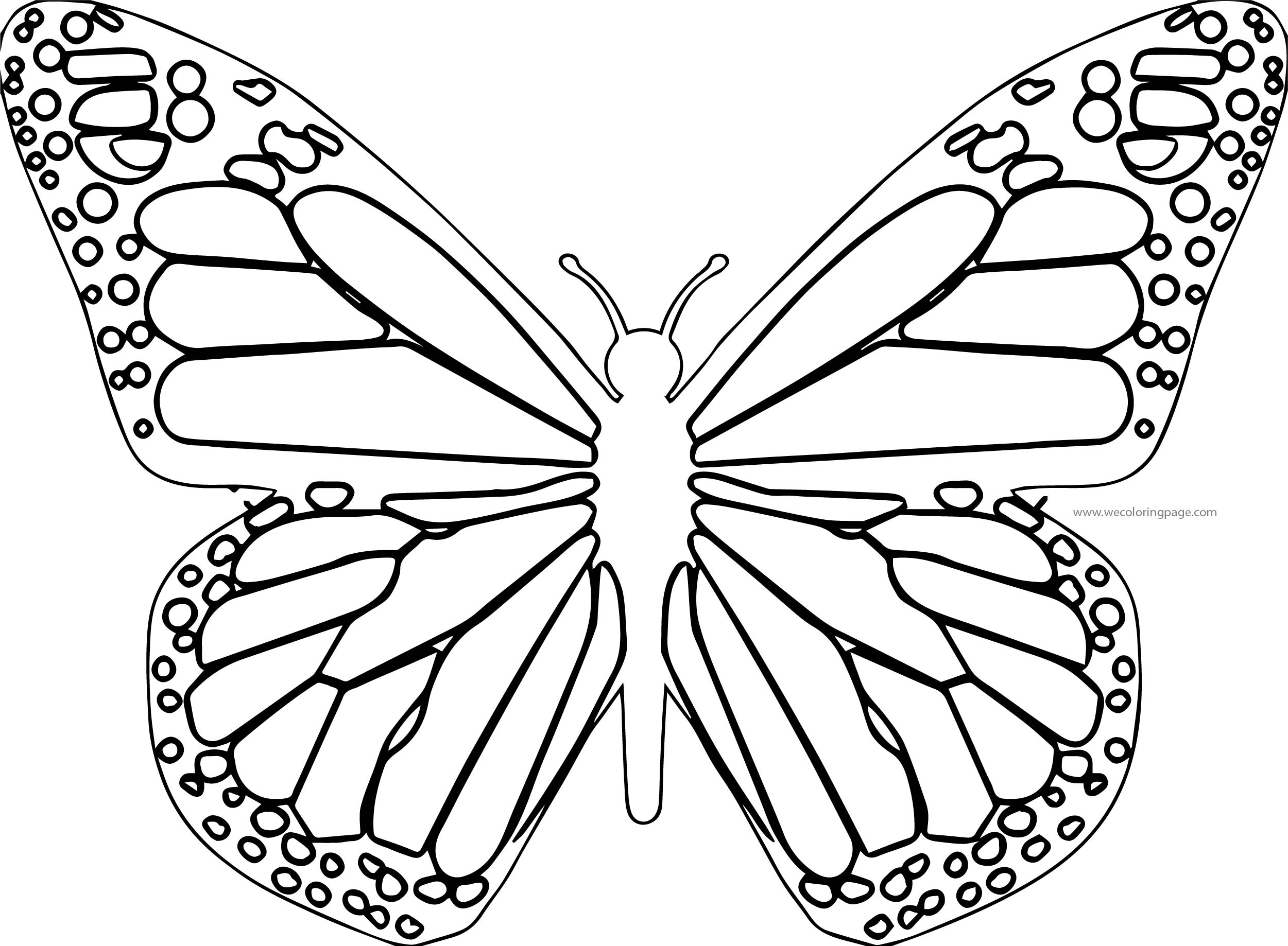 Butterfly Coloring Page Wecoloringpage 123