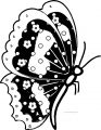 Butterfly Coloring Page Wecoloringpage 135