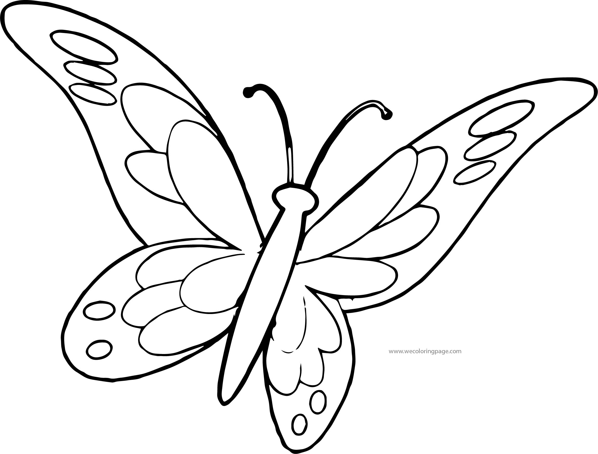 Butterfly Coloring Page Wecoloringpage 157