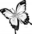 Butterfly Coloring Page Wecoloringpage 194