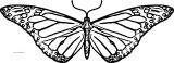 Butterfly Coloring Page Wecoloringpage 196