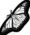 Butterfly Coloring Page Wecoloringpage 197