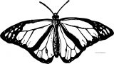 Butterfly Coloring Page Wecoloringpage 199