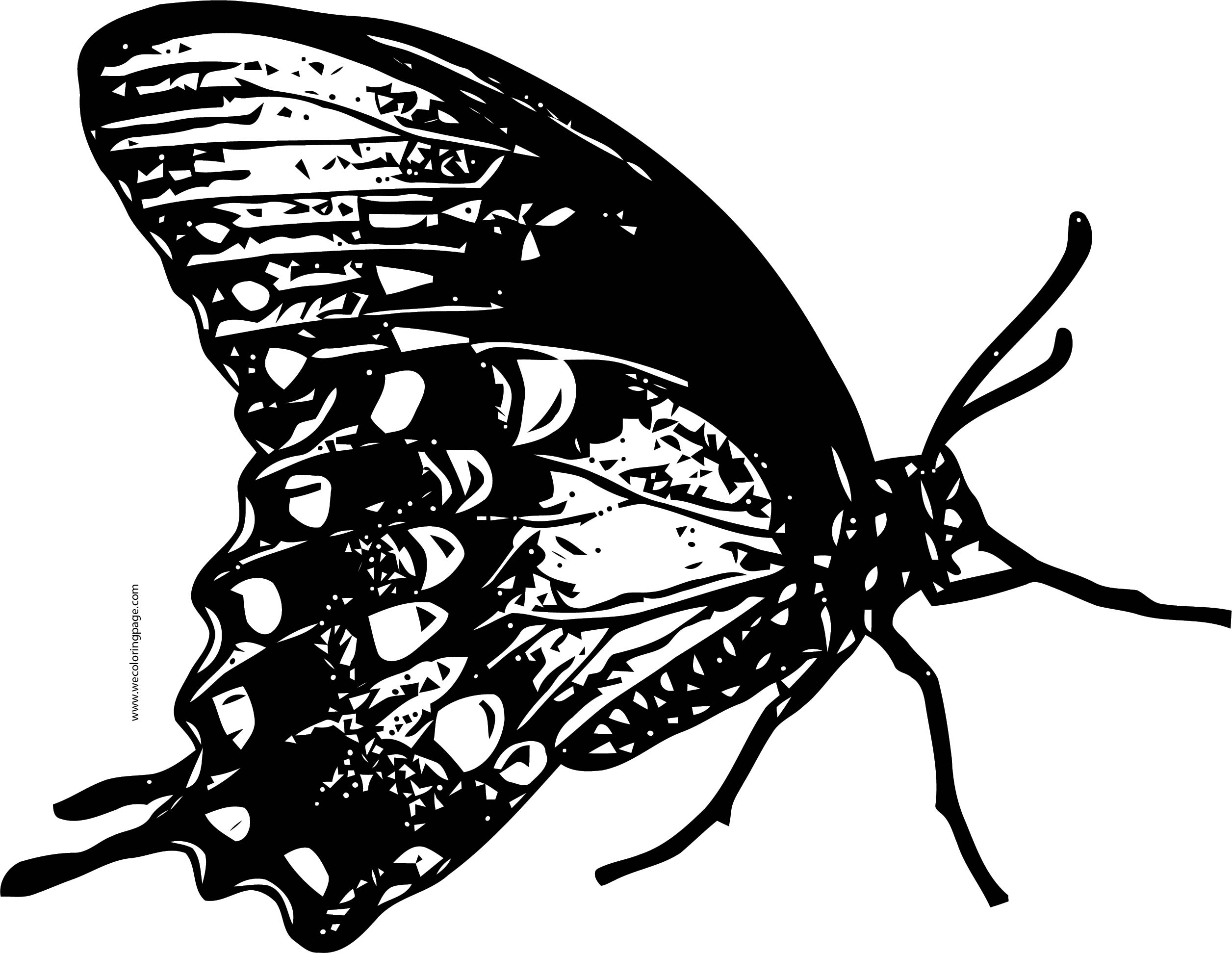 Butterfly Coloring Page Wecoloringpage 206