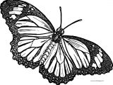 Butterfly Coloring Page Wecoloringpage 210