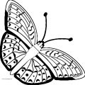 Butterfly Coloring Page Wecoloringpage 219
