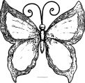 Butterfly Coloring Page Wecoloringpage 239