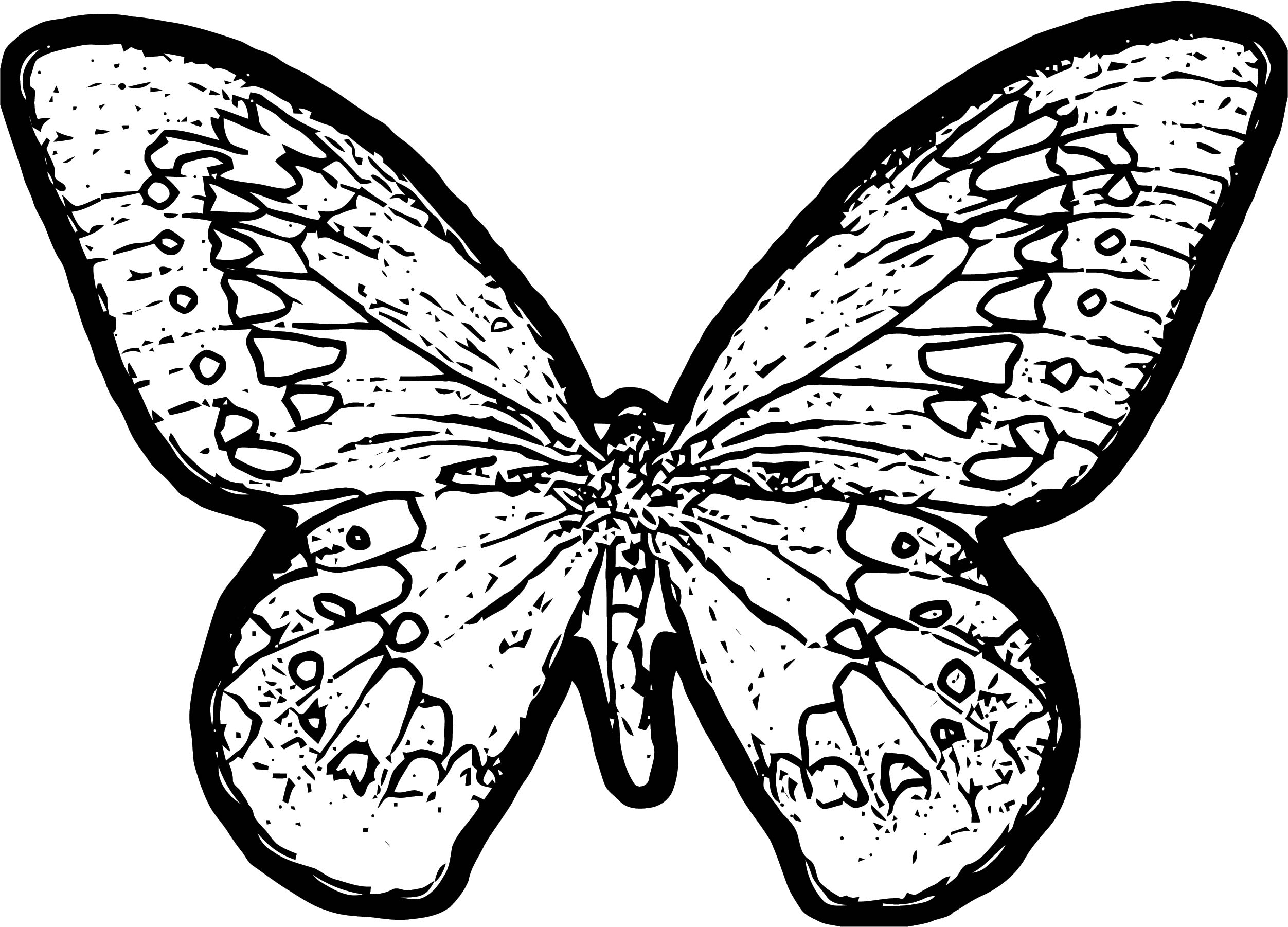 Butterfly Coloring Page Wecoloringpage 256