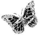 Butterfly Coloring Page Wecoloringpage 261