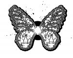 Butterfly Coloring Page Wecoloringpage 266
