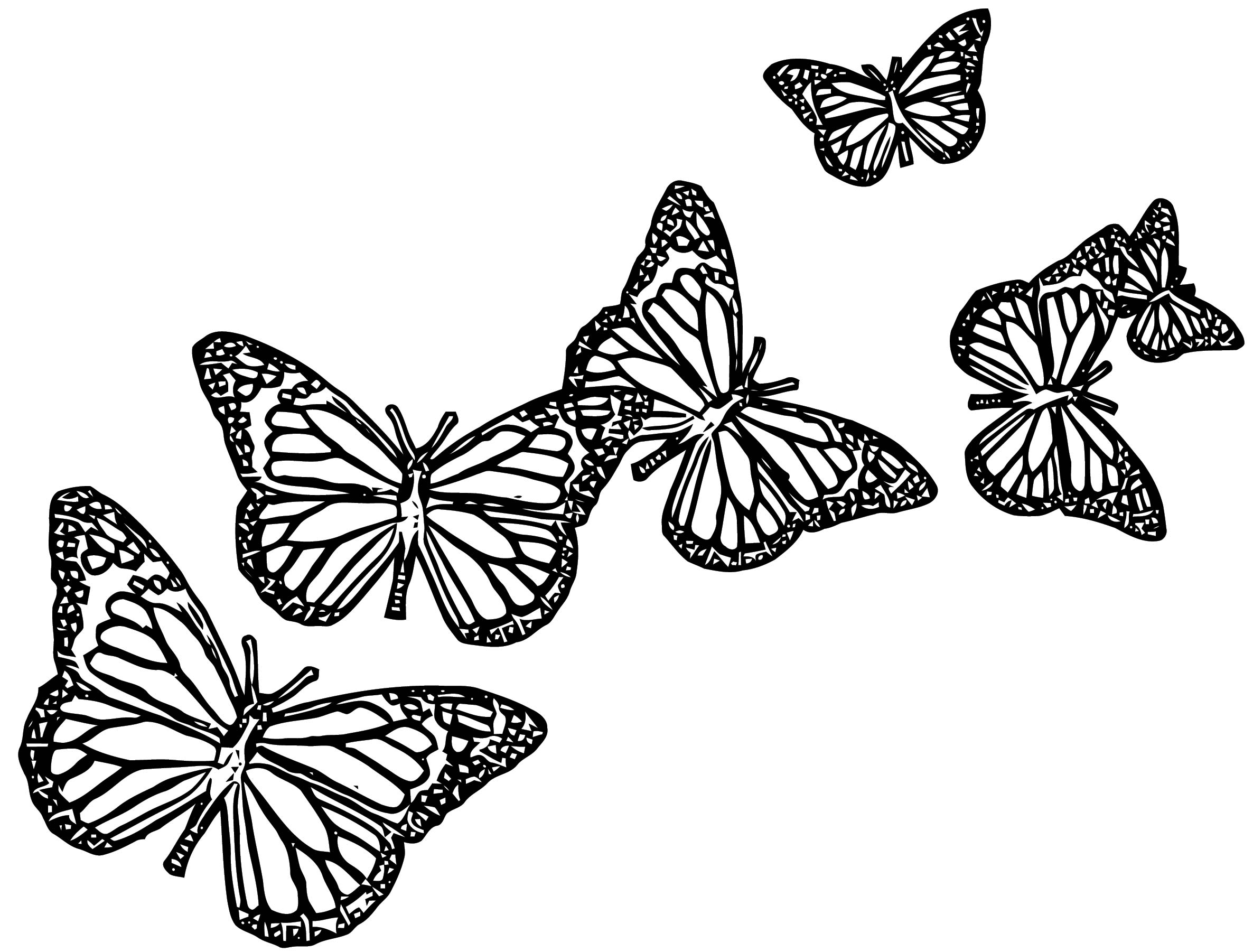 Butterfly Coloring Page Wecoloringpage 312