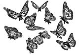 Butterfly Coloring Page Wecoloringpage 318