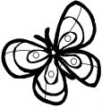 Butterfly Coloring Page Wecoloringpage 344