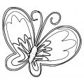 Butterfly Coloring Page Wecoloringpage 370
