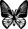 Butterfly Coloring Page Wecoloringpage 51