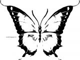 Butterfly Coloring Page Wecoloringpage 65