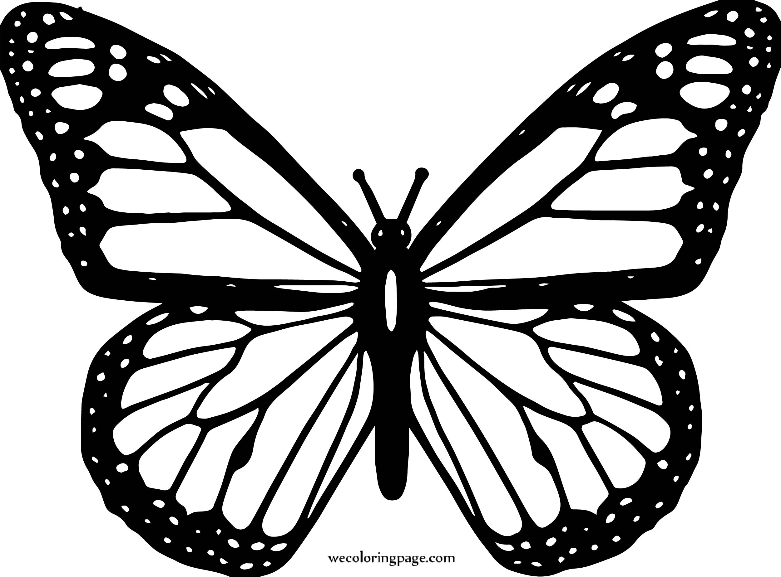Butterfly Coloring Page Wecoloringpage 91