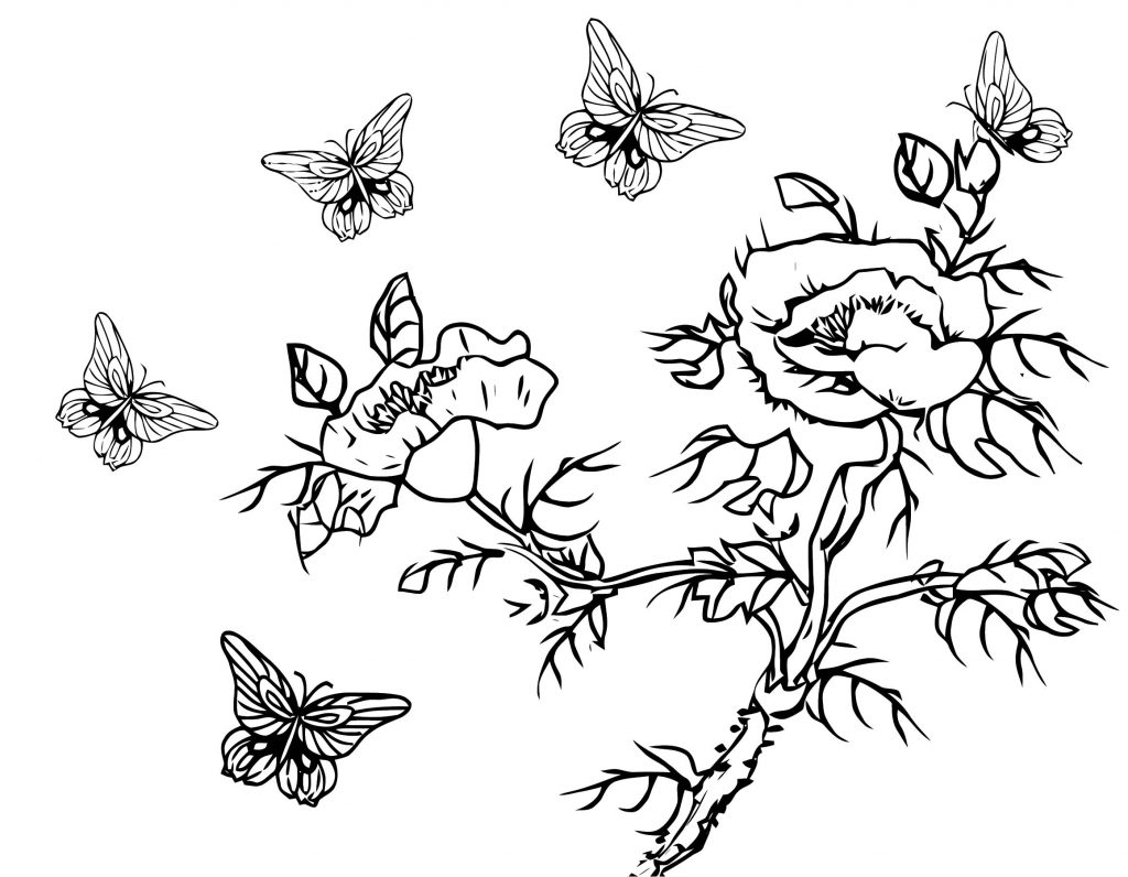 Butterfly Flowers Branch Coloring Page Line