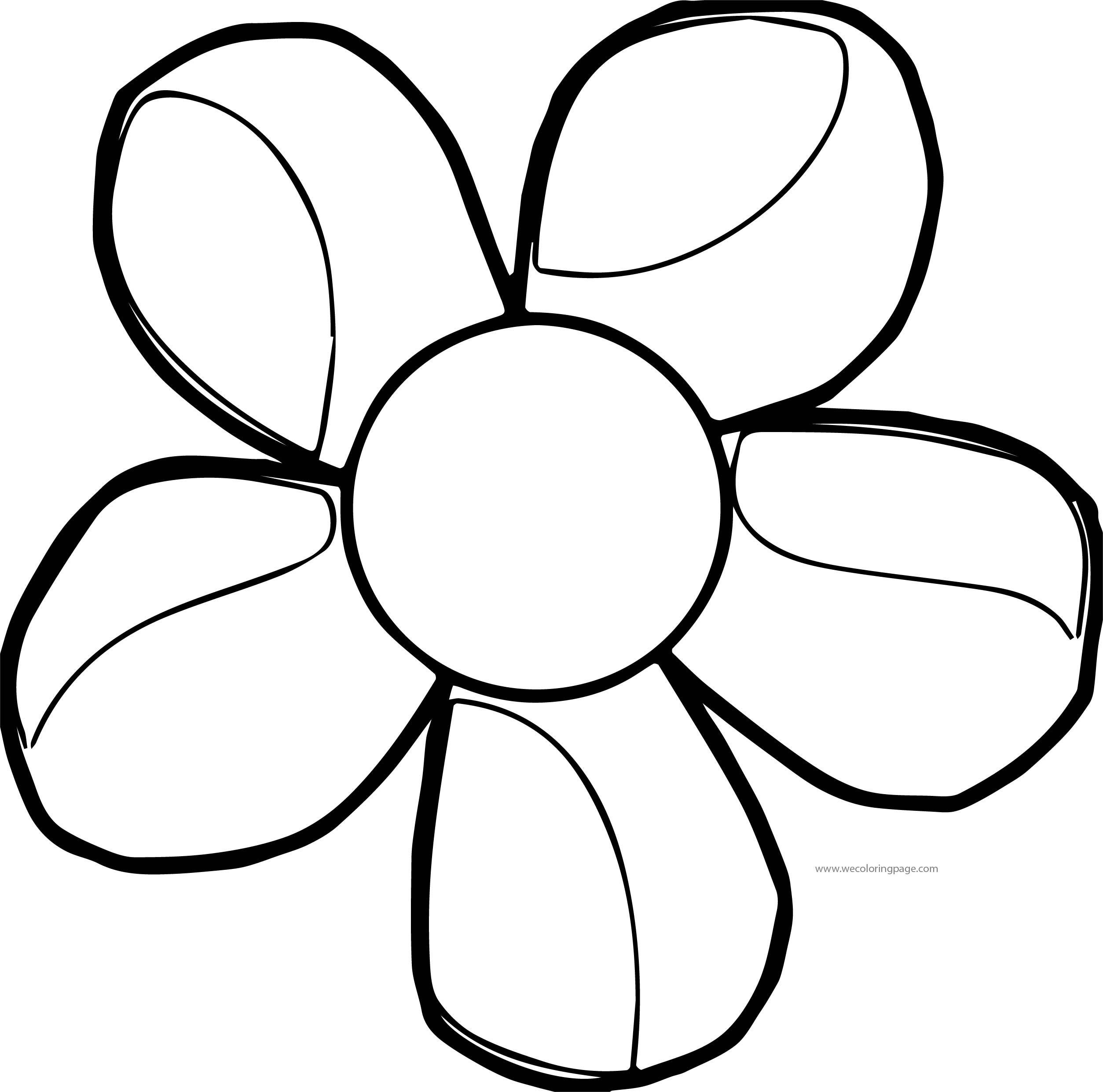 Daisy Flower Shine Coloring Page