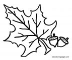 Fall Coloring Page WeColoringPage 084