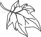 Fall Cute Leaf Coloring Page
