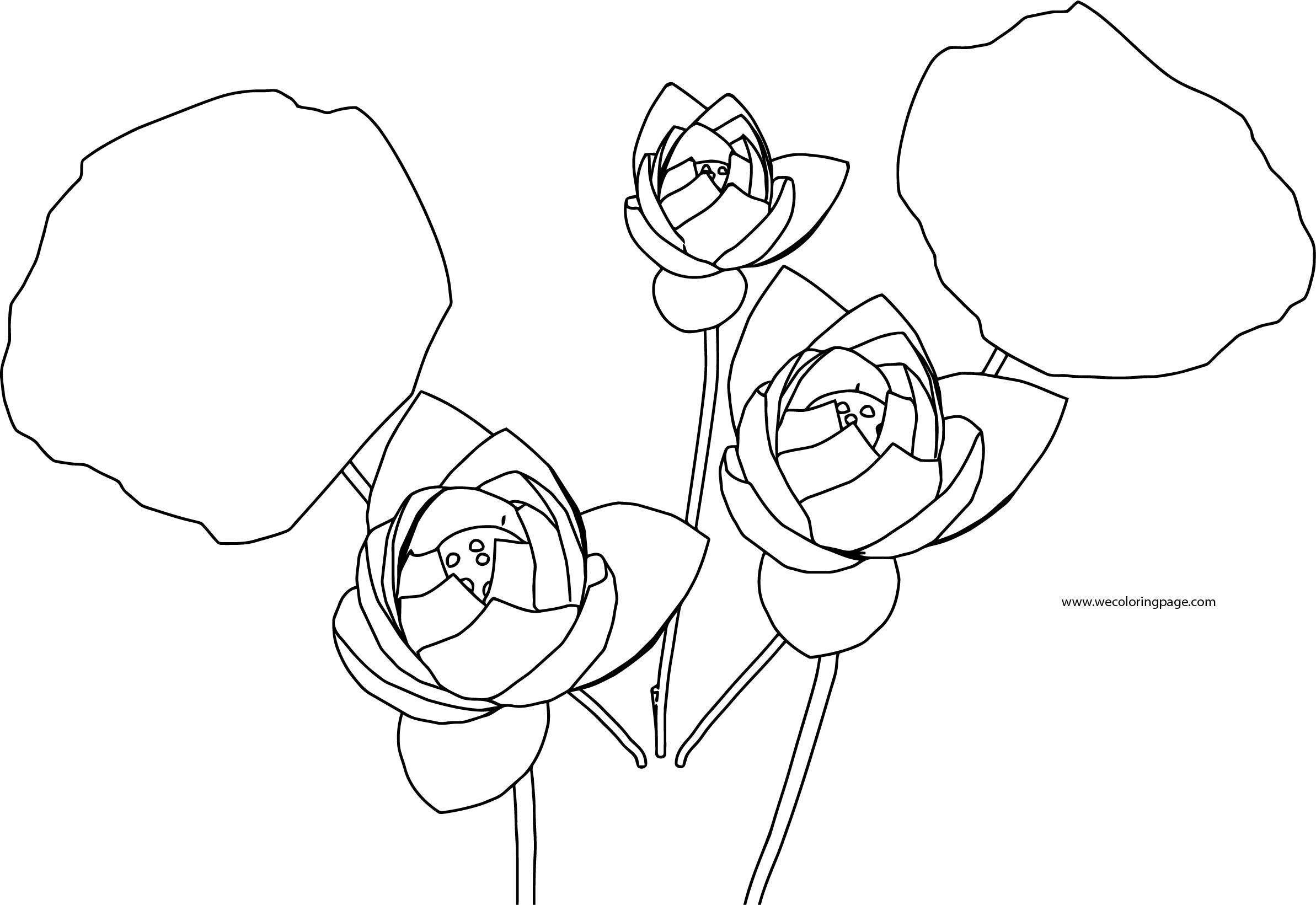 Flower Coloring Page 08