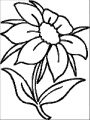 Flower Coloring Page Wecoloringpage 048