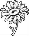 Flower Coloring Page Wecoloringpage 059