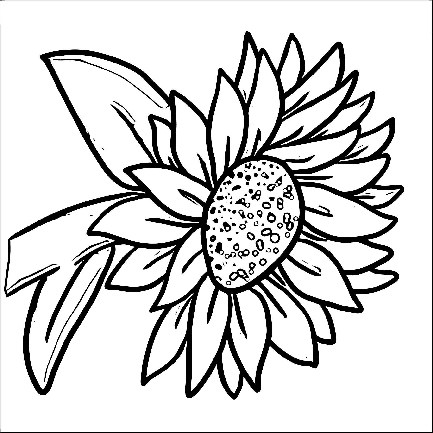 Flower Coloring Page Wecoloringpage 064