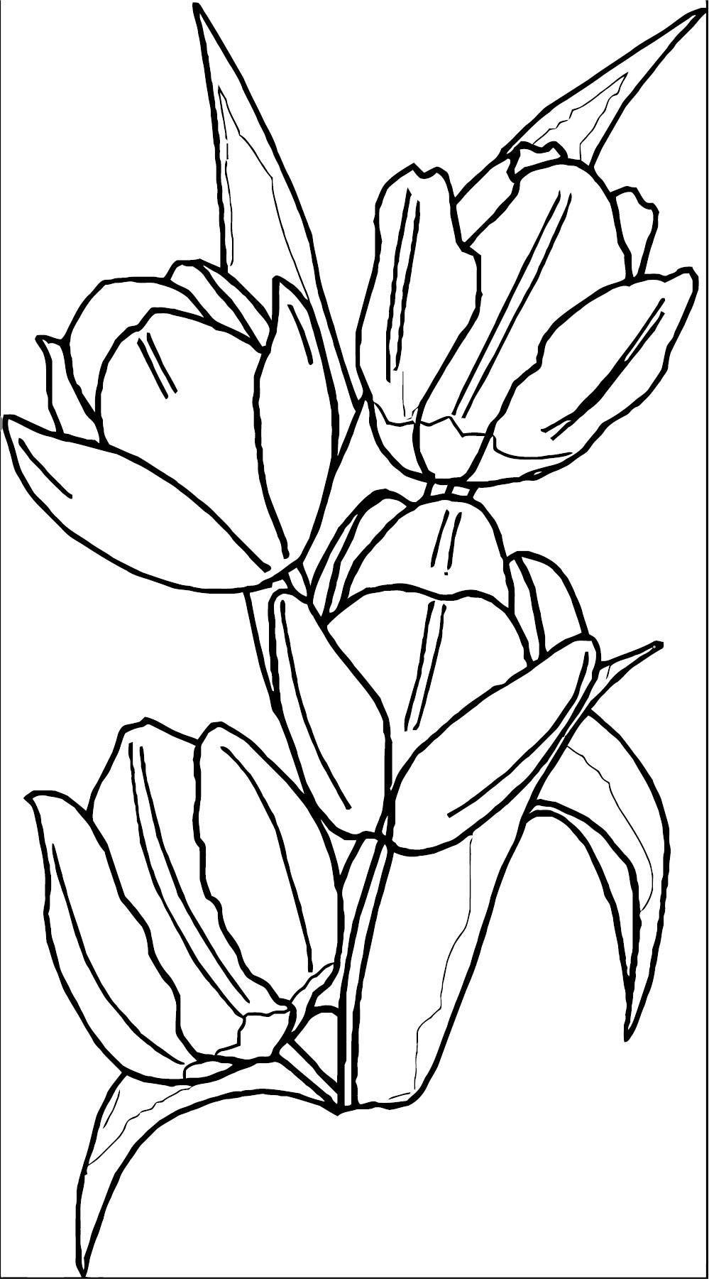Flower Coloring Page Wecoloringpage 076