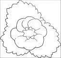 Flower Coloring Page Wecoloringpage 089