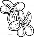 Flower Coloring Page Wecoloringpage 104