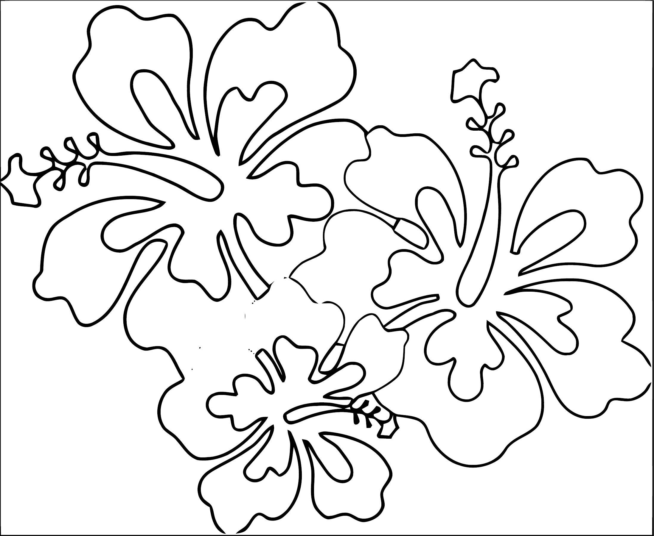 Hawaii Flower Coloring Page 2 Wecoloringpage