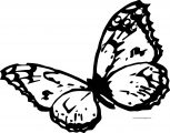 Just Butterfly Coloring Page