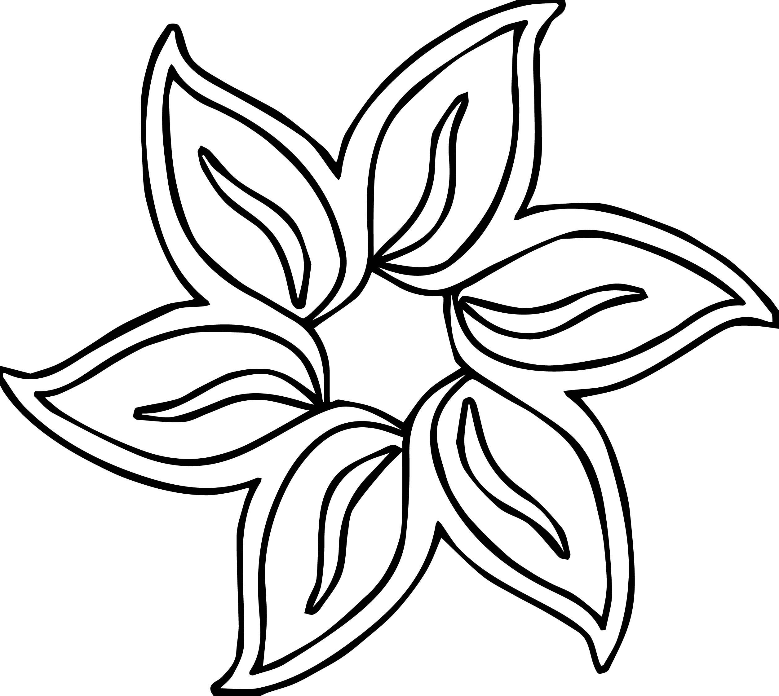 coloring pages of lavender - photo#35